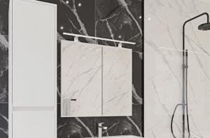 Зеркало RADAWAY Elegant D2103-6080 LED (60)
