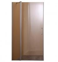 Душевые двери Душевая дверь BRAVO Paslenka 100